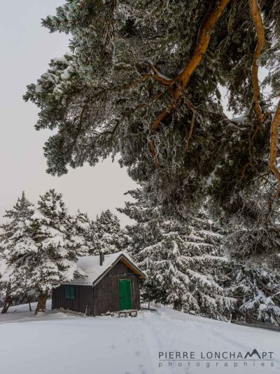 Cabane dans les forêts hivernale du Vercors