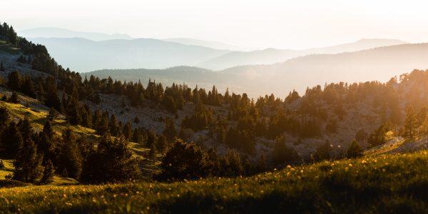 Crêtes du Parc naturel régional du Vercors