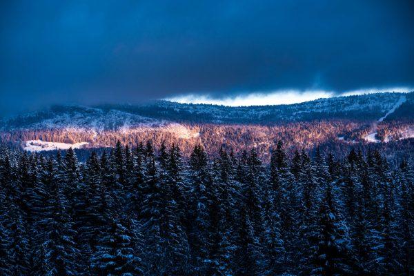 Dernières lueurs du soleil sur les forêts du Vercors.