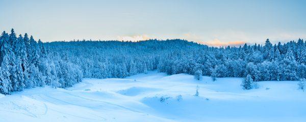 Panorama sur les forêts enneigées du sud Vercors