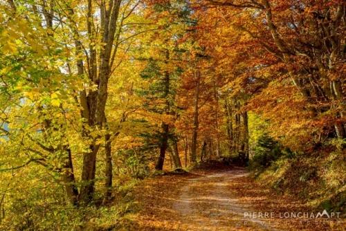 Photo paysage d'automne Vercors.